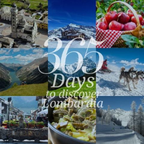 365 in lombardai