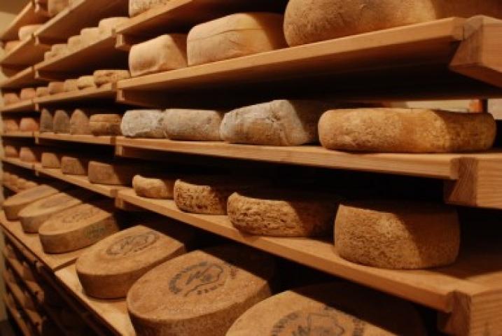 cantina formaggi