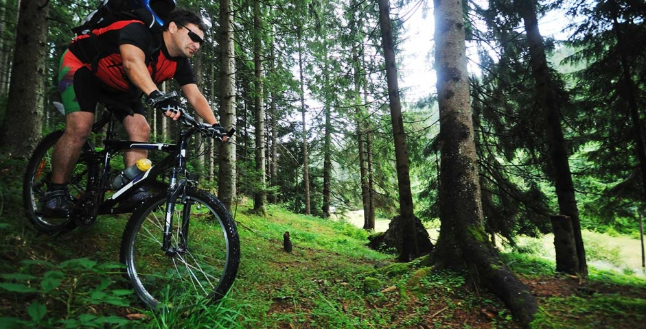 mountain bike uomo bosco 02