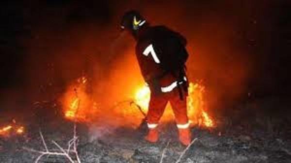 Incendioi legnaia