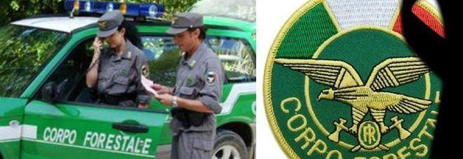 Carabinieri forestali 1