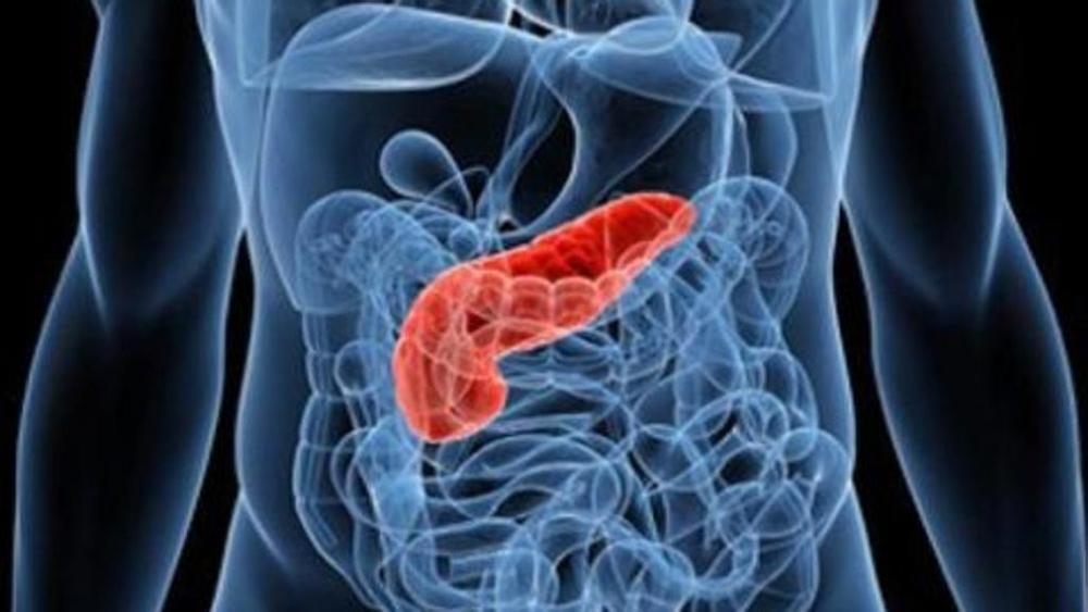 patologie del pancreas