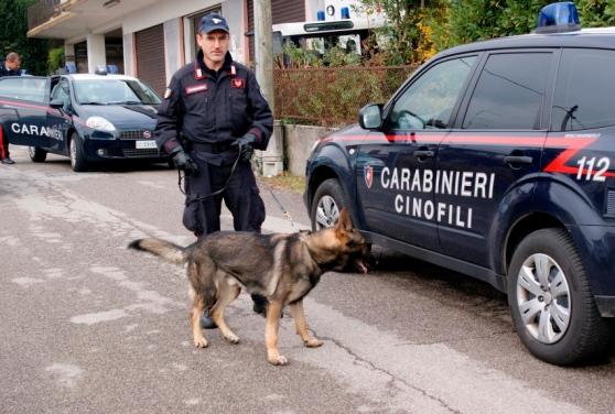 Carabinieri cani antidroga