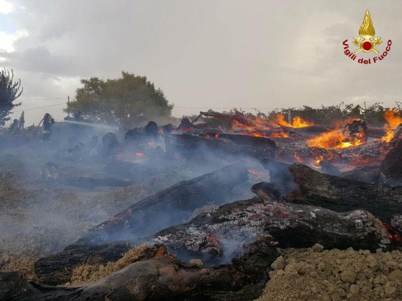 incendio catasta legna edolo