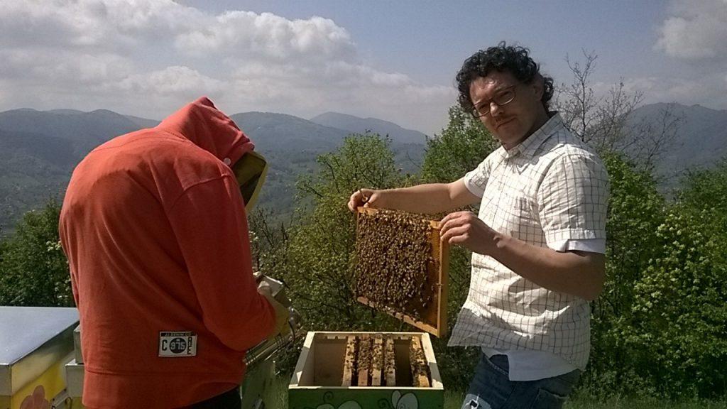 Alberto Parolini giornata mondiale ape