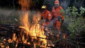 Incendi boschivi prevenzione RFID