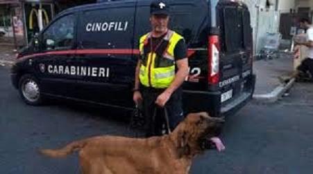 Carabinieri cin ofilis cuole