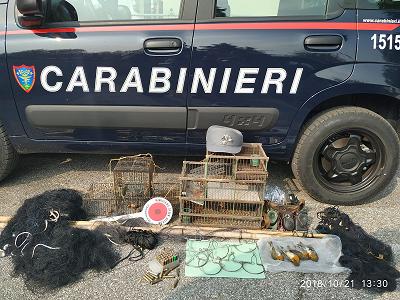 Carabinieri forestali.png