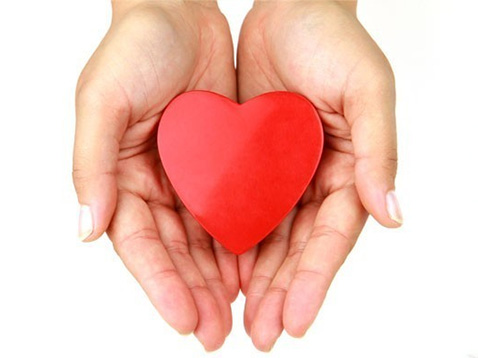 concorso cuore doro avis