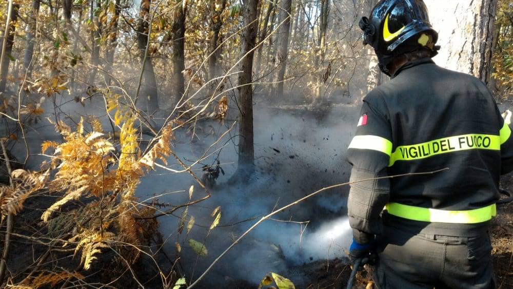 incendio bosco borgomanero 1 2