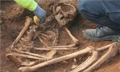 scheletro etàd elò ferro