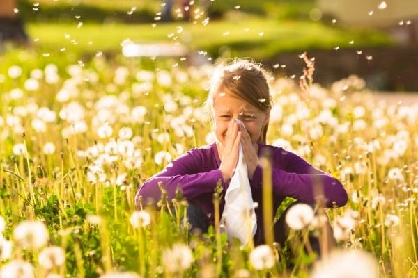 le allergie respiratorie