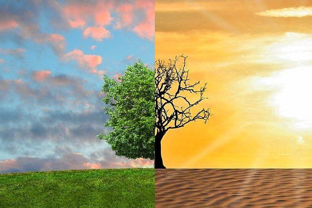 cambiamenti climatici agricoltura