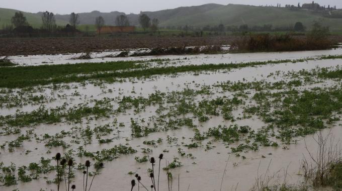 maltempo agricoltura bergamasca