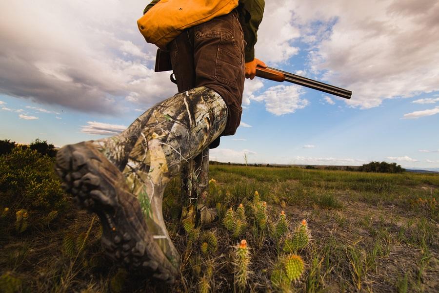 caccia lombardia