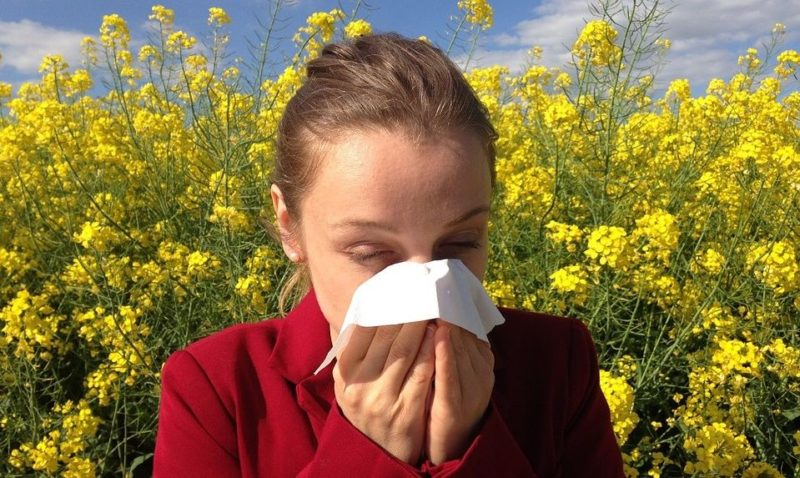 le allergie respiratorie scaled