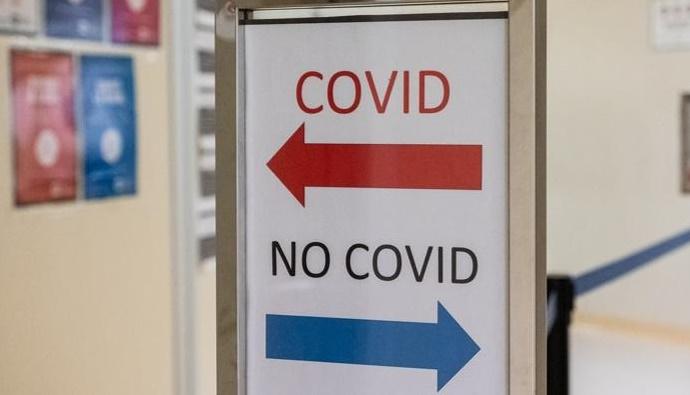 covid no covid
