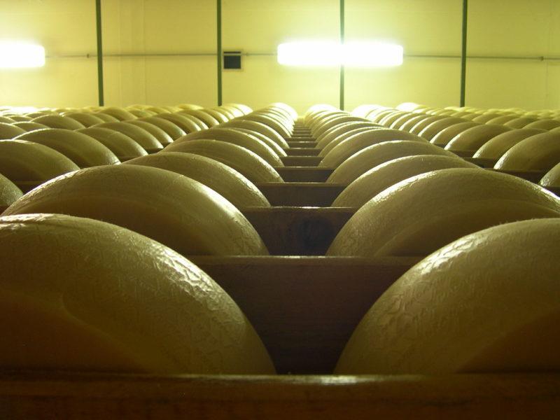 formaggio scaled