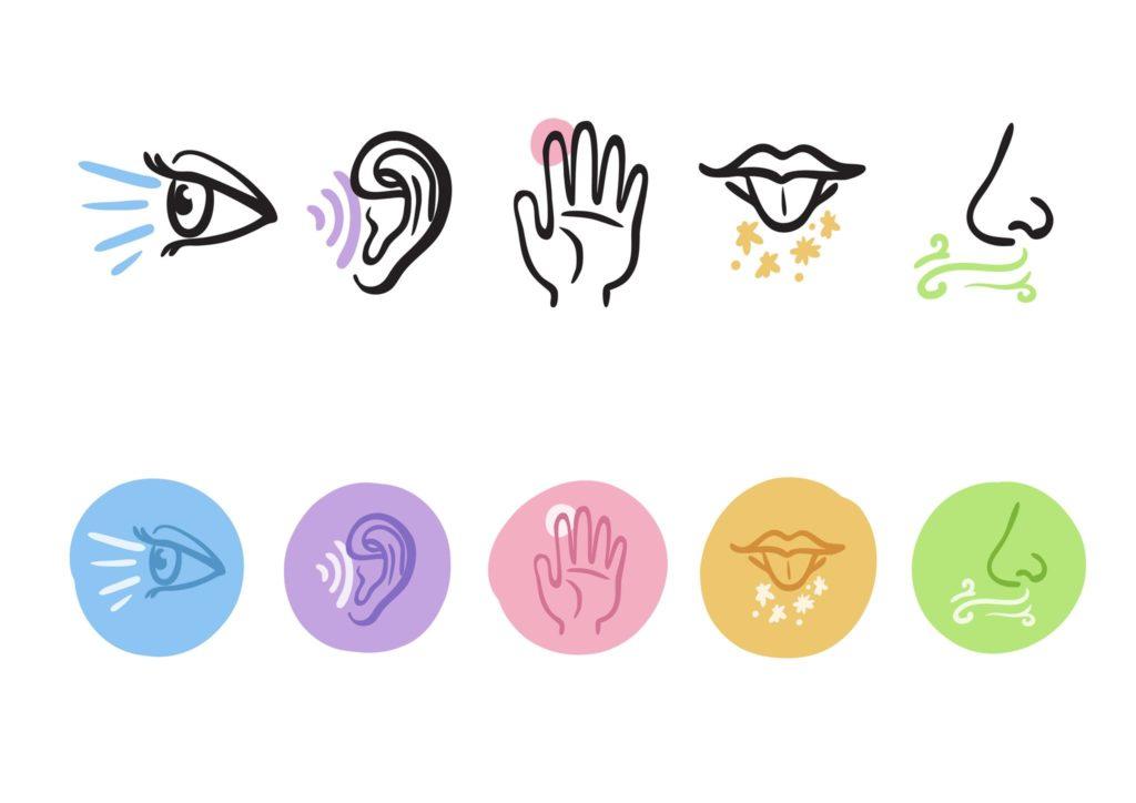 i cinque sensi